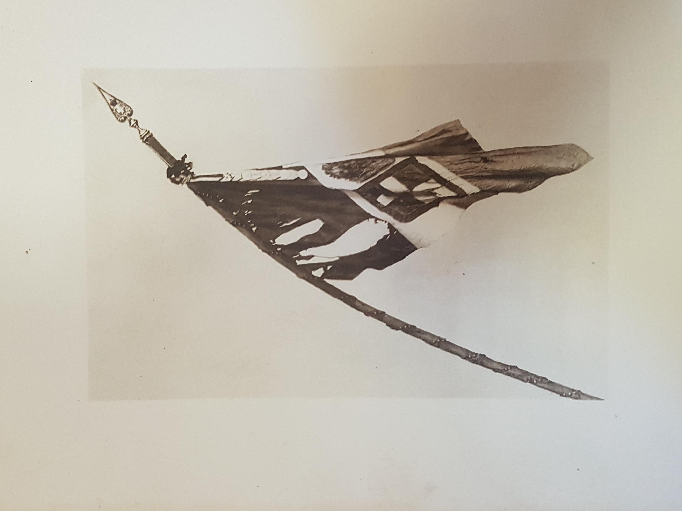 Bandiera di Guerra del 1° rgt Granatieri di Sardegna